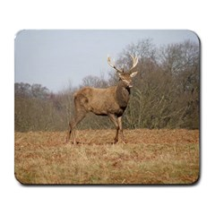 Red Deer Stag On A Hill Large Mousepads by GiftsbyNature