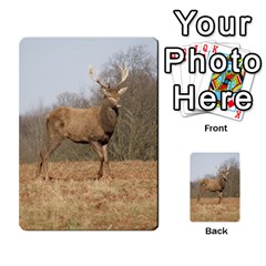 Red Deer Stag On A Hill Multi Purpose Cards (rectangle)  by GiftsbyNature