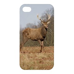 Red Deer Stag On A Hill Apple Iphone 4/4s Premium Hardshell Case by GiftsbyNature