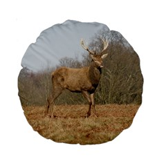 Red Deer Stag On A Hill Standard 15  Premium Round Cushions by GiftsbyNature