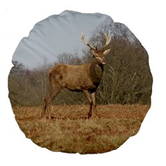 Red Deer Stag On A Hill Large 18  Premium Round Cushions by GiftsbyNature