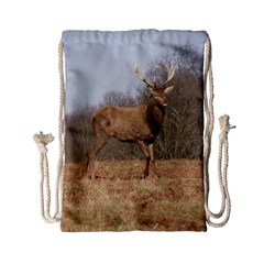 Red Deer Stag On A Hill Drawstring Bag (small) by GiftsbyNature