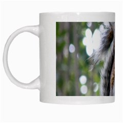 Gray Squirrel Eating Sycamore Seed White Mugs by GiftsbyNature