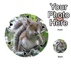 Gray Squirrel Eating Sycamore Seed Playing Cards 54 (round)  by GiftsbyNature