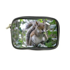 Gray Squirrel Eating Sycamore Seed Coin Purse by GiftsbyNature