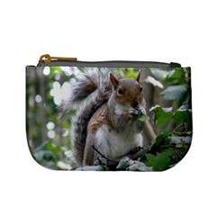 Gray Squirrel Eating Sycamore Seed Mini Coin Purses by GiftsbyNature