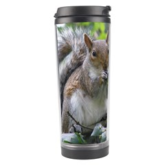 Gray Squirrel Eating Sycamore Seed Travel Tumbler by GiftsbyNature