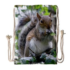 Gray Squirrel Eating Sycamore Seed Drawstring Bag (large) by GiftsbyNature