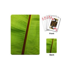 Ensete Leaf Playing Cards (mini)  by picsaspassion