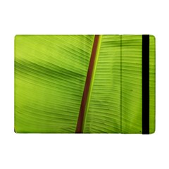 Ensete Leaf Ipad Mini 2 Flip Cases by picsaspassion