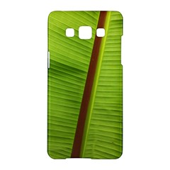 Ensete Leaf Samsung Galaxy A5 Hardshell Case  by picsaspassion