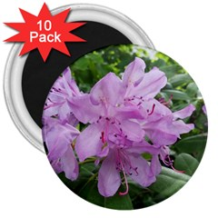 Purple Rhododendron Flower 3  Magnets (10 Pack)