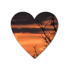 Tree Branches And Sunset Heart Magnet by picsaspassion