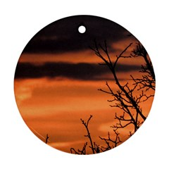 Tree Branches And Sunset Round Ornament (two Sides)  by picsaspassion