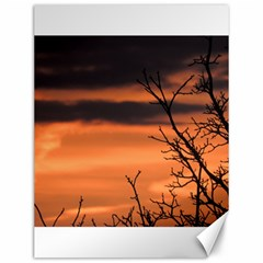 Tree Branches And Sunset Canvas 12  X 16   by picsaspassion