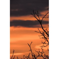 Tree Branches And Sunset 5 5  X 8 5  Notebooks by picsaspassion