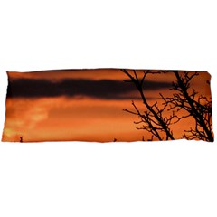 Tree Branches And Sunset Body Pillow Case (dakimakura) by picsaspassion