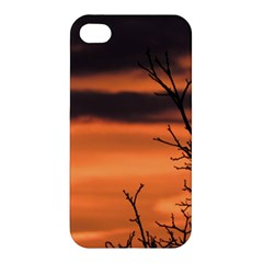 Tree Branches And Sunset Apple Iphone 4/4s Premium Hardshell Case by picsaspassion
