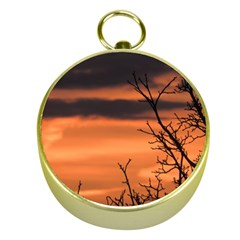 Tree Branches And Sunset Gold Compasses by picsaspassion