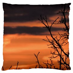 Tree Branches And Sunset Large Flano Cushion Case (one Side) by picsaspassion