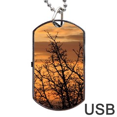 Colorful Sunset Dog Tag Usb Flash (two Sides)  by picsaspassion