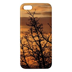 Colorful Sunset Apple Iphone 5 Premium Hardshell Case by picsaspassion