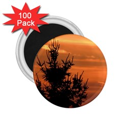 Christmas Tree And Sunset 2 25  Magnets (100 Pack)  by picsaspassion