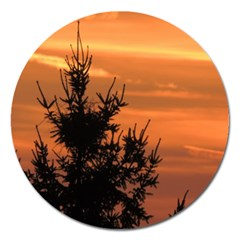 Christmas Tree And Sunset Magnet 5  (round) by picsaspassion