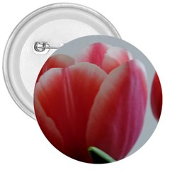 Red - White Tulip Flower 3  Buttons by picsaspassion