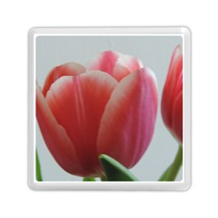 Red   White Tulip Flower Memory Card Reader (square)  by picsaspassion
