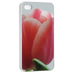 Red   White Tulip Flower Apple Iphone 4/4s Seamless Case (white)