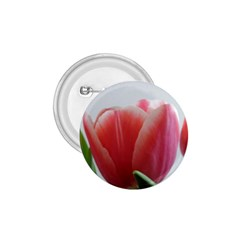Red Tulips 1 75  Buttons by picsaspassion