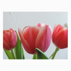 Red Tulips Collage Prints by picsaspassion