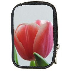 Red Tulips Compact Camera Cases