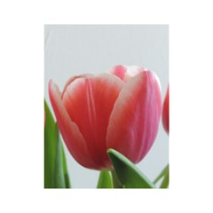 Red Tulips Shower Curtain 48  X 72  (small)  by picsaspassion