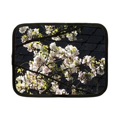 Blooming Japanese Cherry Flowers Netbook Case (small)  by picsaspassion