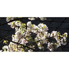 Blooming Japanese Cherry Flowers You Are Invited 3d Greeting Card (8x4) by picsaspassion