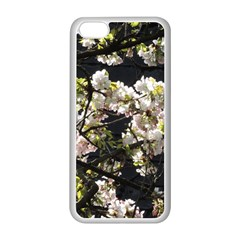 Blooming Japanese Cherry Flowers Apple Iphone 5c Seamless Case (white) by picsaspassion