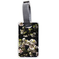 Japanese Cherry Flower Luggage Tags (one Side)  by picsaspassion