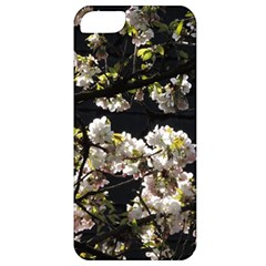 Japanese Cherry Flower Apple Iphone 5 Classic Hardshell Case by picsaspassion