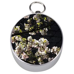 Japanese Cherry Flower Silver Compasses by picsaspassion