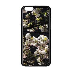 Japanese Cherry Flower Apple Iphone 6/6s Black Enamel Case by picsaspassion