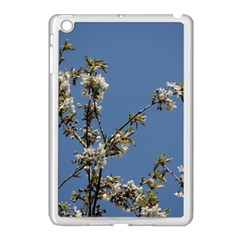 White Cherry Flowers And Blue Sky Apple Ipad Mini Case (white)