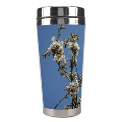 White Cherry Flowers And Blue Sky Stainless Steel Travel Tumblers by picsaspassion