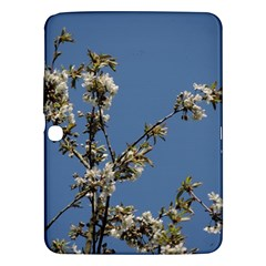 White Cherry Flowers And Blue Sky Samsung Galaxy Tab 3 (10 1 ) P5200 Hardshell Case  by picsaspassion