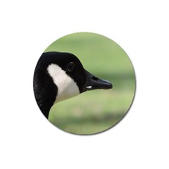 Goose, Black And White Magnet 3  (round) by picsaspassion