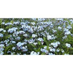 Blue Forget Me Not Flowers You Are Invited 3d Greeting Card (8x4) by picsaspassion