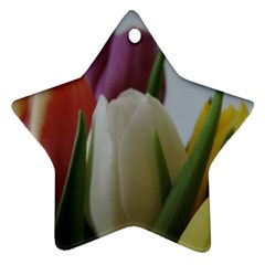 Colored By Tulips Ornament (star)  by picsaspassion
