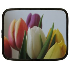 Colored By Tulips Netbook Case (xxl)  by picsaspassion