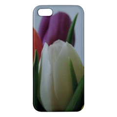 Colored By Tulips Iphone 5s/ Se Premium Hardshell Case by picsaspassion